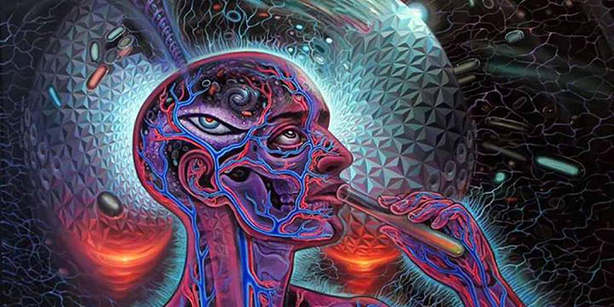 İnsanların deneyimleri beynin yapısını şekillendiriyor