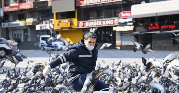 İstanbul'da meydanlar kuşlara kaldı