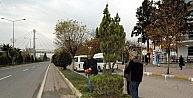 Belediye Ekipleri Bitkileri Buduyor