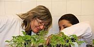 Bulgar Akademisyene Sebze Aşılama Eğitimi