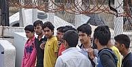 Çanakkalede 14 Kaçak Göçmen Yakalandı