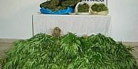 Denizli'de Uyuşturucu Operasyonunda İki Tutuklama