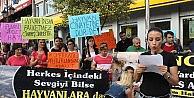 Edirnede Pompalı Tüfekle Köpek Vahşetine Tepkiler Büyüyor