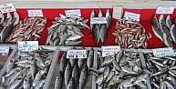 Havalar Soğudu, Tekirdağ'da Balık Fiyatları Arttı