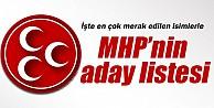 İşte MHP'nin il il aday listesi