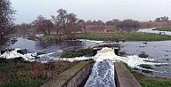 Karacabey Longozunda Çöp Ve Kanalizasyon Tehdidi