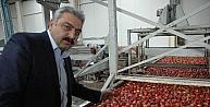 Karamanda Elma Üreticisi Beş Yıldır Teşvik Bekliyor