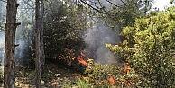 Kent Ormanındaki Yangın Korkuttu