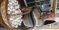 Köy Yumurtası İlgi Gördü