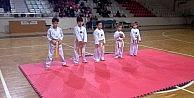 Mudanyalı Minik Tekvandocular Terfi Sınavında Terledi