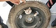 Stepne Lastiğine Sıkışan Kediyi İtfaiye Kurtardı