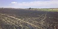 Tekirdağda Buğday Tarlasında Büyük Yangın